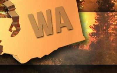 Senate passes bill to prevent and fight wildfires